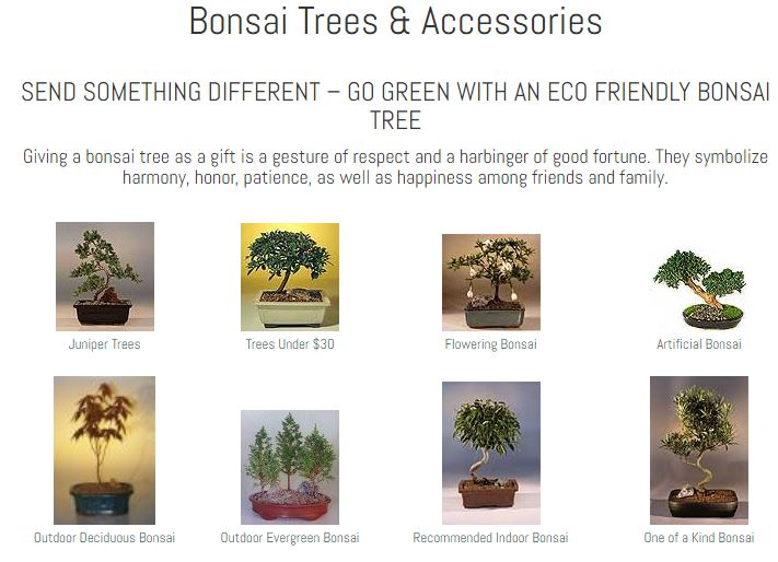 Bonsai Boy of New York Coupons 10% Off On 3 Trees